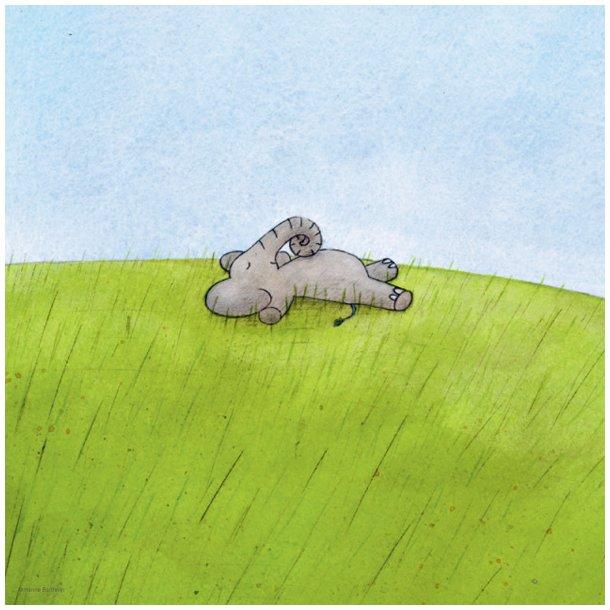 Bartholin, Nø i græsset