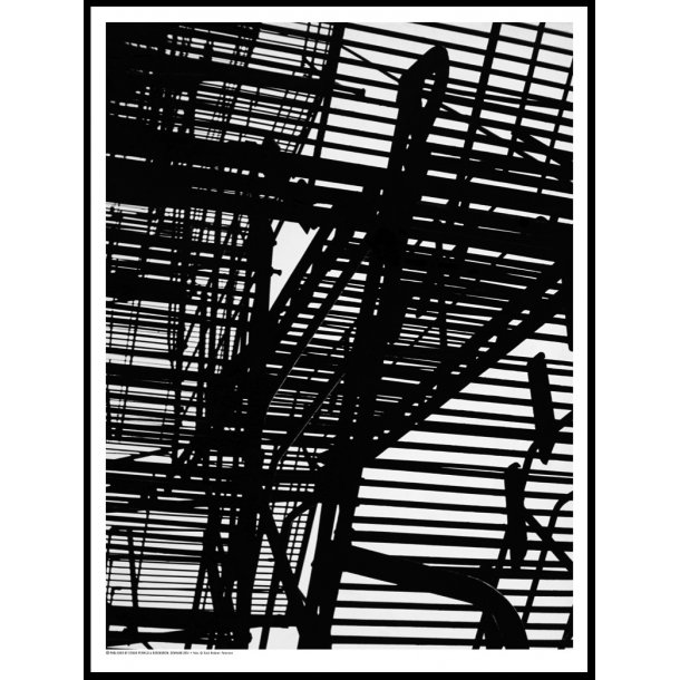 Helmer-Petersen, Fire Escape, Chicago 1951