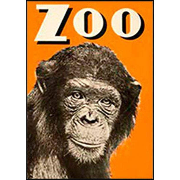 Z 24. - Zoo, Abe