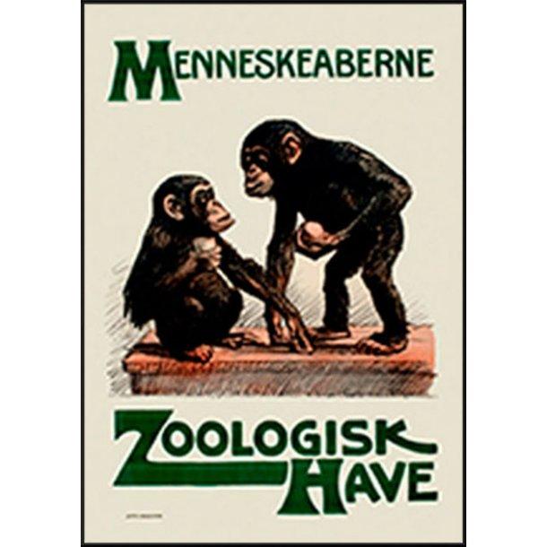 Z 31. - Zoo, Menneskeaberne
