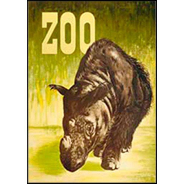 Z 32. - Zoo, Næsehorn