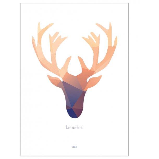 Nordic Art. Colour Edition. Design plakat.