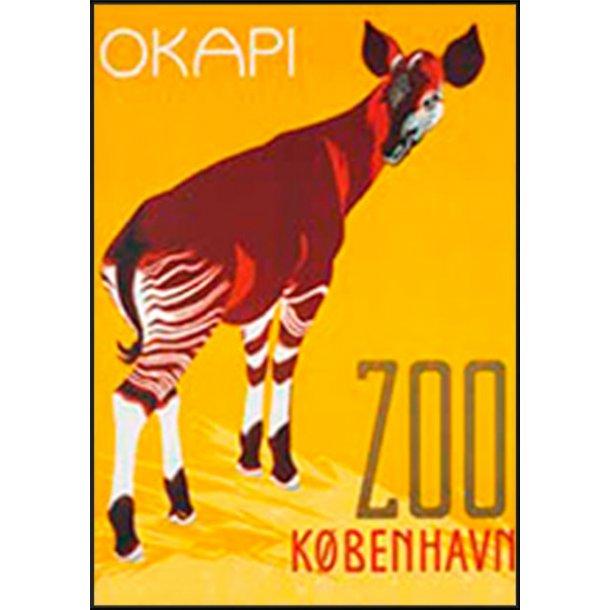 Z 22. - Zoo, Okapi