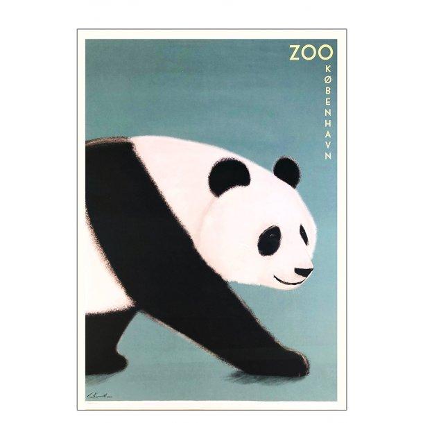 Zoo - Panda