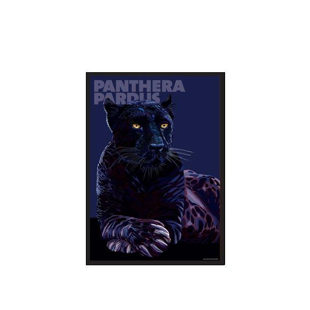 Panthera – Pardus M/2