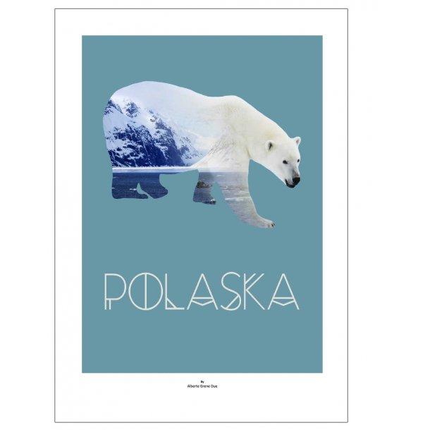 Isbjørn | Polaska. Designplakat med dyr.