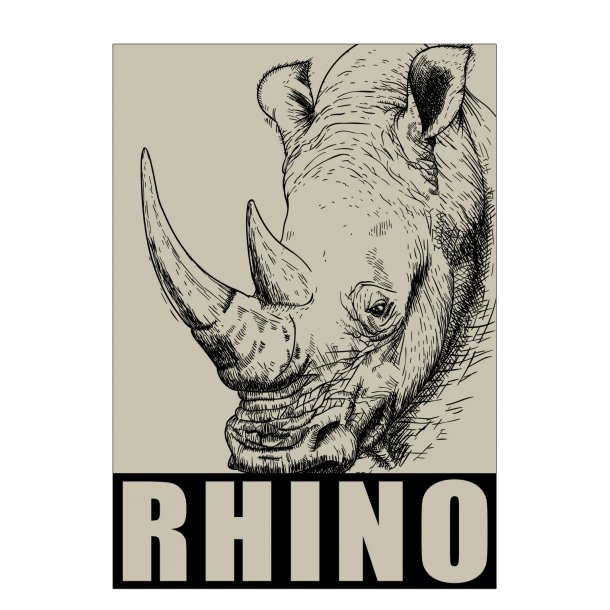 Næsehorn / Rhino. Sebastian Klein