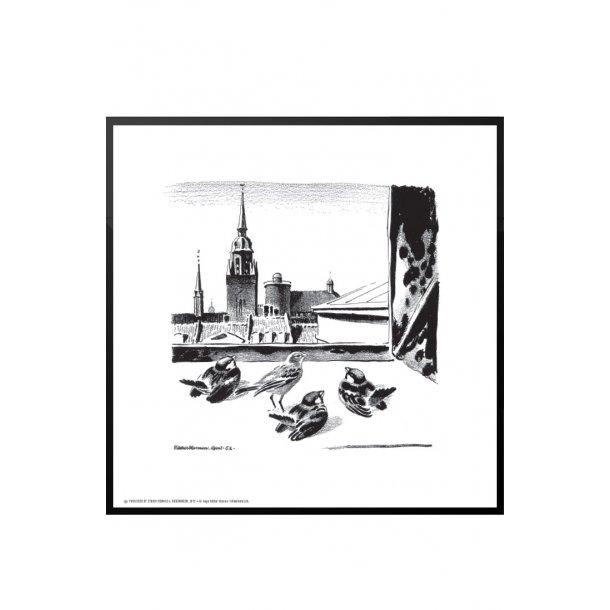 Spurve i København, Aage Sikker Hansen