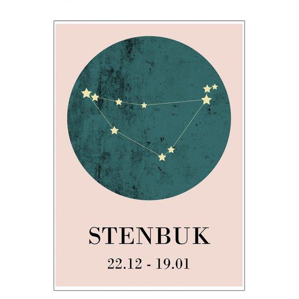 Stjernetegn - Stenbuk