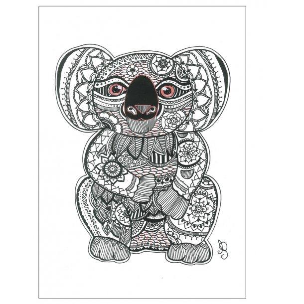 Koalabjørn - Håndtegnet plakat.