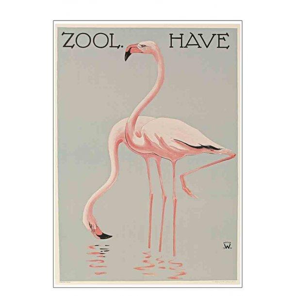Z 2. - Wennerwald, Flamingos / Zoo 11