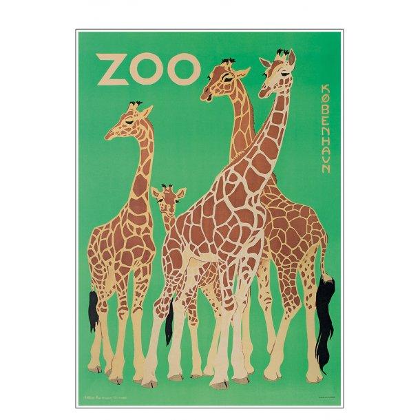 Z 9. - Zoo, Giraf -2