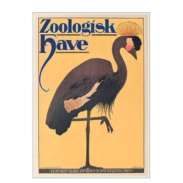 Z 17. - Zoo - Anonym, Trane