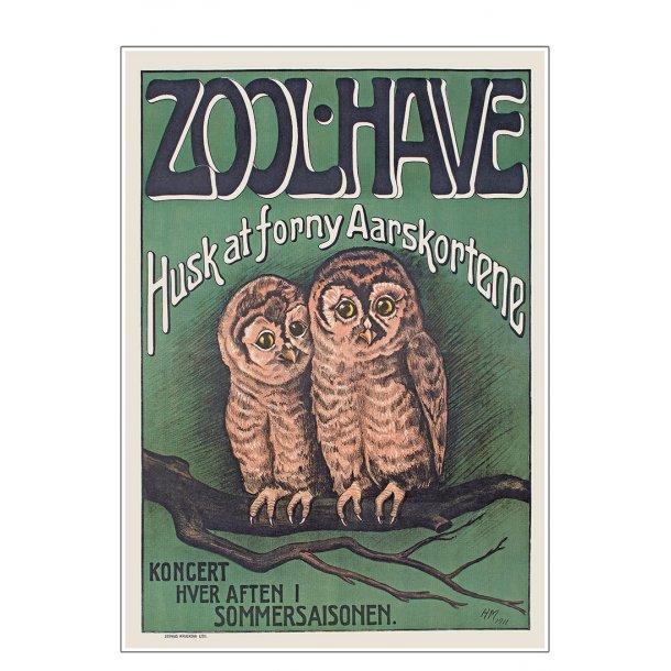 Z 18. - Zoo - Ugle