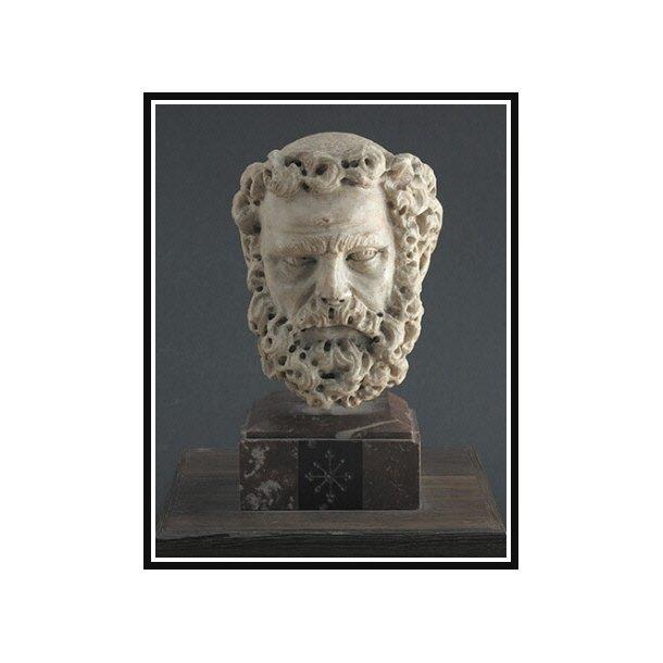 Pisano, Hoved af en skægget mand