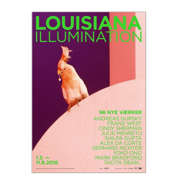 Louisiana Ilumination. ALEX DA CORTE