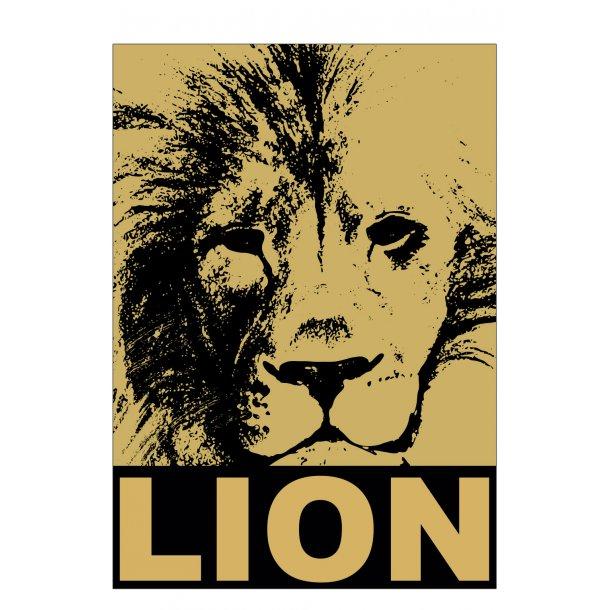 Løve / Lion. Sebastian Klein