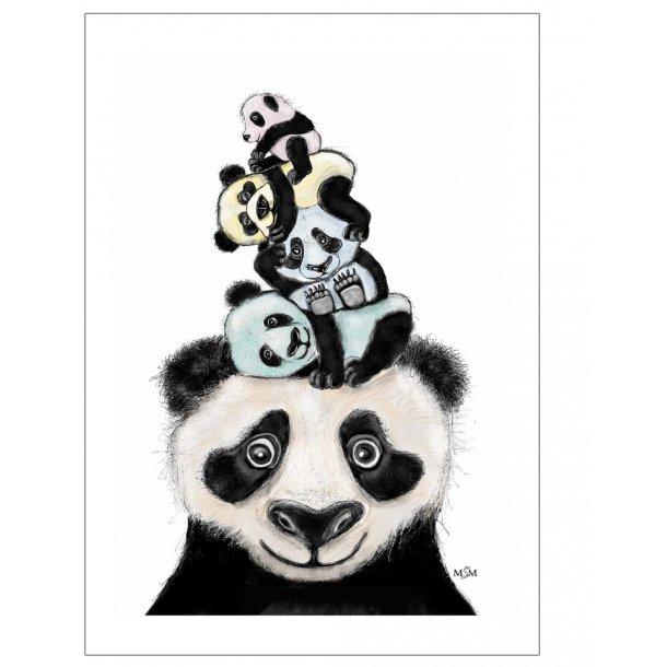Panda illustration. Plakat med dyr.