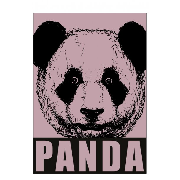 Panda, gammel rosa. Sebastian Klein