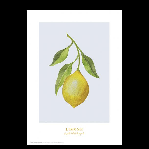 Plakat med citron: Limone (blå/grå)
