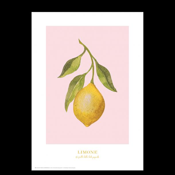 Plakat med citron: Limone (lyserød)