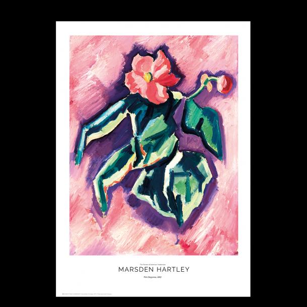 Marsden Hartly. Pink Begonias.