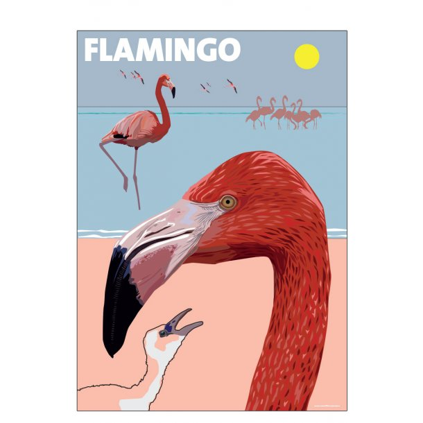 Flamingo, Petersen