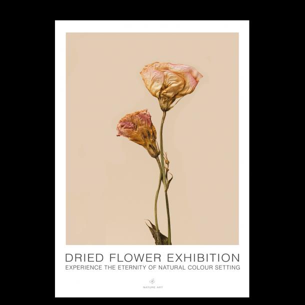 Rosa blomst. Flower exhibition